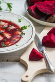 Close-up on a plate of borscht and fresh vegetables royalty free stock photos