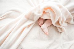 Rotund baby feet covered with rug stock photos