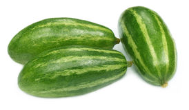 Close up of pointed gourds. Over white background stock image