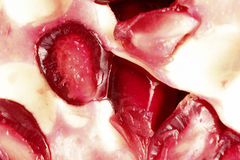 Close up of pomegranate Royalty Free Stock Images