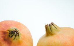 Close Up of Pomegranates isolated on a white background Stock Images