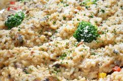 Porcini mushrooms  risotto Royalty Free Stock Images