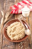 Porridge with milk. Close up on porridge with milk Royalty Free Stock Photo