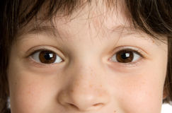The close-up portrait. Of little  boy Royalty Free Stock Photography