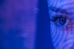 Close up portrait of art color woman face.Full Royalty Free Stock Image