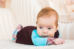 Close-up portrait of baby boy with red hair and blue eyes. Newborn child lyling in couch. Adorable baby boy with red hair and blue eyes. Newborn child lyling in Royalty Free Stock Photo