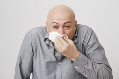 Close-up portrait of bald man sneezing and wiping nose with napkin or tissue while having allergy or runny nose. Standing over gray background. Guy got sick Stock Image