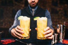 Close up portrait of bartender or barman serving drinks. Close up portrait of bartender or barman serving fresh drinks Stock Images