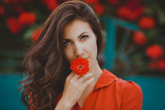 Close-up portrait of beautiful brunette woman with red rose in her lips. Toned image Stock Images