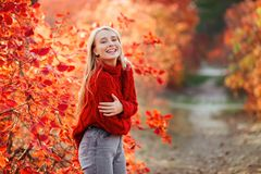 Close up portrait of a Beautiful girl near colorful autumn leaves. royalty free stock photo