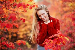 Close up portrait of a Beautiful girl near colorful autumn leaves. royalty free stock image