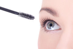 Close up portrait of beautiful woman applying mascara on eyelash Royalty Free Stock Photography