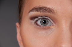 Close up portrait of beautiful womans eye Royalty Free Stock Photo