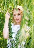 Close-up portrait blond woman in the branches of a willow Royalty Free Stock Image