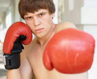 Close-up portrait of a boxer Royalty Free Stock Photography