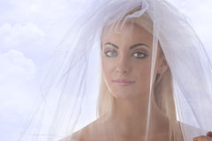 Close-up portrait of bride with veil on the face. Pretty blonde bride with white veil con the face, she looks in to the lens royalty free stock photo