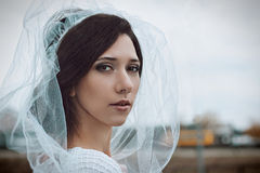 Close-up portrait of bride in white veil. Wedding photo. Stock Images