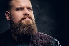 Close up portrait of brutal bearded male. stock images