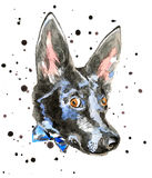 Close up portrait of cheerful watercolor dog Stock Photos