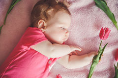 Close-up portrait of cute baby girl sleeping on pink bed with tulip in hand. Royalty Free Stock Photos