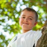 Portrait of boy in tree. Royalty Free Stock Photo