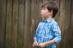 Close-up portrait of cute little boy Stock Photography