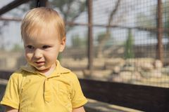 Close-up portrait of cute little boy 3 year smiles and hesitated at camera stock photography