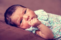 Cute two weeks old newborn baby girl lying down. Close up portrait of a cute two weeks old newborn baby girl lying down, eyes open and looking around wearing a Stock Image