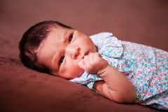 Close up portrait of a cute two weeks old newborn baby girl lying down stock photography