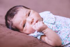 Cute two weeks old newborn baby girl lying down. Close up portrait of a cute two weeks old newborn baby girl lying down, eyes open and looking around wearing a Stock Images