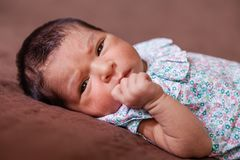 Cute two weeks old newborn baby girl lying down. Close up portrait of a cute two weeks old newborn baby girl lying down, eyes open and looking around wearing a Royalty Free Stock Photo