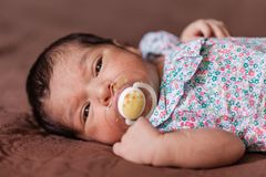 Cute two weeks old newborn baby girl with a pacifier. Close up portrait of a cute two weeks old newborn baby girl lying down with a pacifier or dummy, eyes open Stock Image