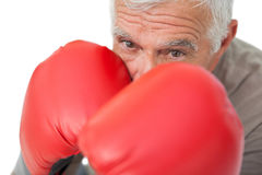 Close-up portrait of a determined senior boxer Royalty Free Stock Photos