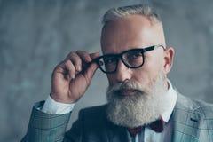 Close up portrait of elegant rich confident smart with modern ha. Irdress haircut white beard creative virile dreamy luxurious pensive freelancer touching black Stock Photos