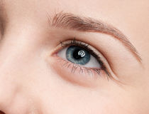 Close-up portrait of eye shadow zone Stock Image
