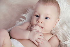 Close-up of Portrait funny baby lick his fingers o Royalty Free Stock Photo
