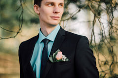 Close up portrait of handsome stylish groom outdoors in park with red bowtie.  Royalty Free Stock Photo