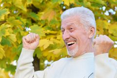 Close-up portrait of happy elderly man posing in autumn park royalty free stock images
