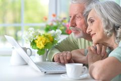 Close-up portrait of happy senior couple with laptop. Happy senior couple with laptop at home royalty free stock image