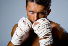Close-up portrait of a kick-boxer in a fighting stance Stock Image