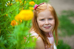 Close up, portrait of little red headed girl Stock Image