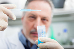 Close-up portrait of a male researcher filling a test tube Stock Photography