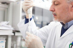 Close-up portrait of a male researcher filling a test tube Royalty Free Stock Photography