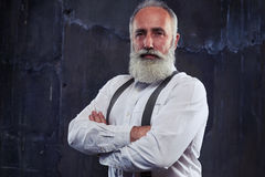 Close-up portrait of middle-aged man with gray beard and nice ha Royalty Free Stock Photo
