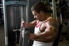 Close-up portrait of a muscular man in the gym. Stock Photos