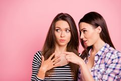 Close-up portrait of nice-looking attractive lovely cute charming feminine girlish minded focused straight-haired girls. Gossiping mocking isolated over pink royalty free stock photography