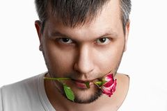 Free Close-up Portrait Of A Man`s Face With A Rose In His Mouth On A White Background. Close-up Stock Photo - 158351010
