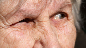 Close-up portrait of a old woman`s gaze. Emotions of grandmother.  Royalty Free Stock Images