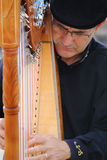Portrait passion of busker musician playing harp F Royalty Free Stock Photography