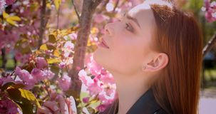 Close-up portrait of pretty ginger girl observing the beauty of pink floral park background. Close-up portrait of pretty ginger girl observing the beauty of stock video footage